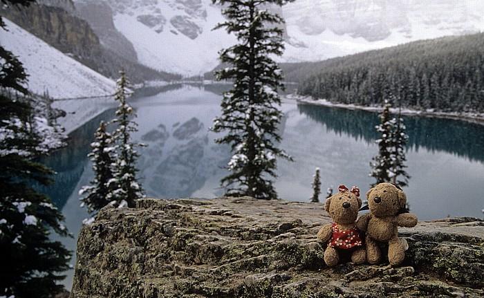 Banff National Park Moraine Lake: Teddine und Teddy