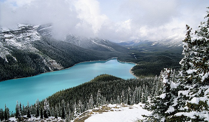 Banff National Park Blick vom Bow Summit: Peyto Lake