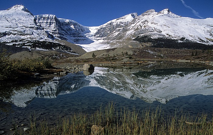 Jasper National Park Columbia Icefield: Snow Dome, Dome Glacier, Mount Kitchener