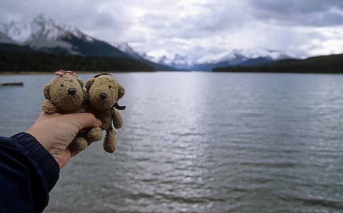 Jasper National Park Maligne Lake: Teddine und Teddy