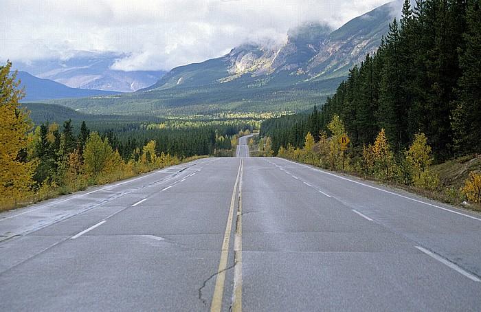 Jasper National Park Icefields Parkway (Alberta Highway 93)