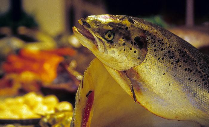München Viktualienmarkt: Abteilung VI: Frischer Fisch