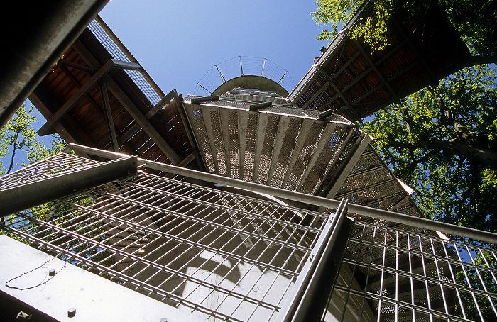 Nationalpark Hainich: Baumturm