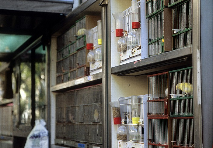 La Rambla (Rambla dels Estudis): Vogelmarkt Barcelona