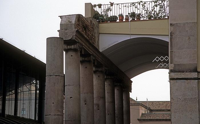 Ciutat Vella (El Raval) Barcelona