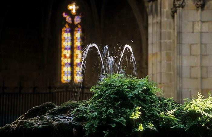 Kathedrale (La Catedral): Kreuzgang: Brunnen Barcelona