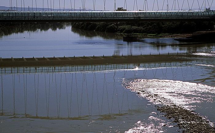 Saragossa Ebro, Brücke des Dritten Jahrtausends (Puente del Tercer Milenio)