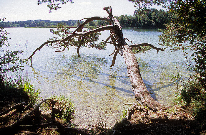 Osterseen Großer Ostersee