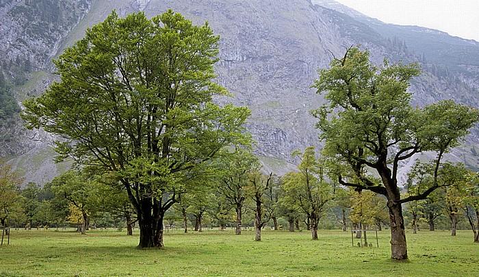 Großer Ahornboden Rißtal, Karwendelgebirge