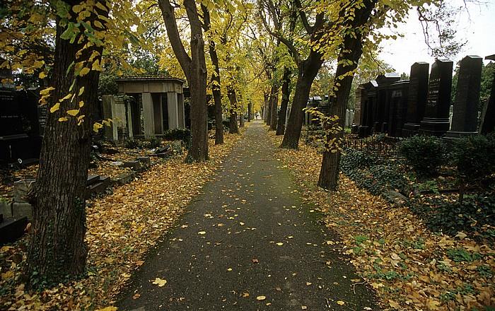 Wiener Zentralfriedhof: Alter jüdischer Friedhof Wien