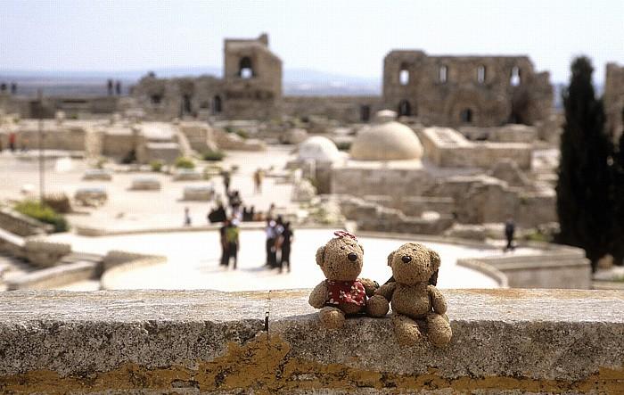 Aleppo Zitadelle: Teddine und Teddy