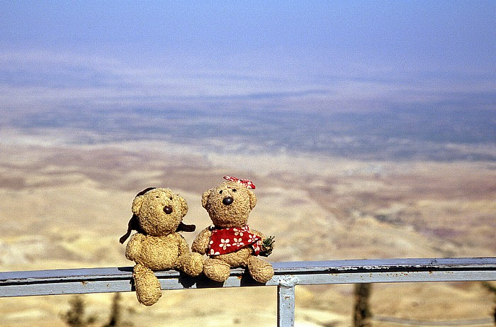Berg Nebo (Jebel Siyagha): Teddy und Teddine