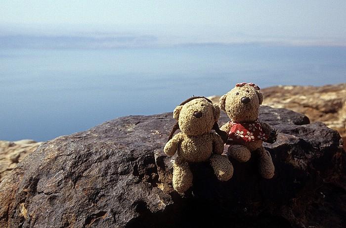 Totes Meer Dead Sea Panoramic Complex: Teddy und Teddine
