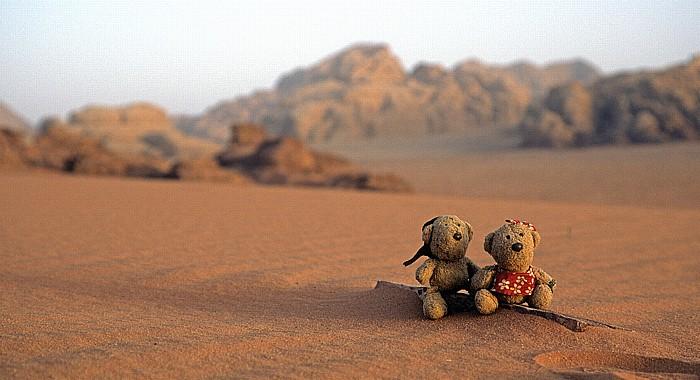 Wadi Rum Ar Rak'a: Sanddüne: Teddy und Teddine