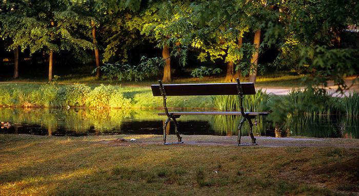 Dresden Schlosspark Pillnitz: Englischer Garten: Parkbank