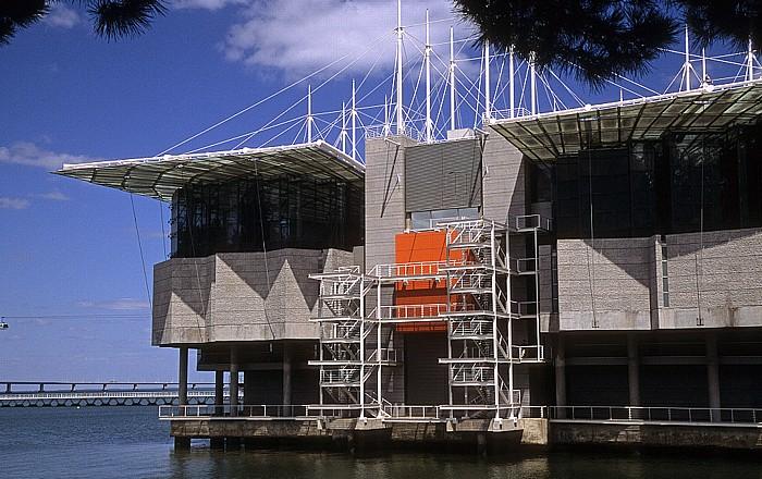 Parque das Nações: Oceanário de Lisboa Lissabon