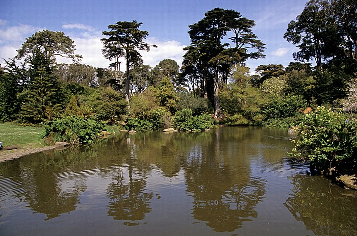 Golden Gate Park: San Francisco Botanical Garden