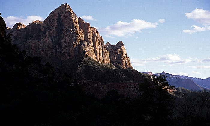 The Watchman Zion National Park
