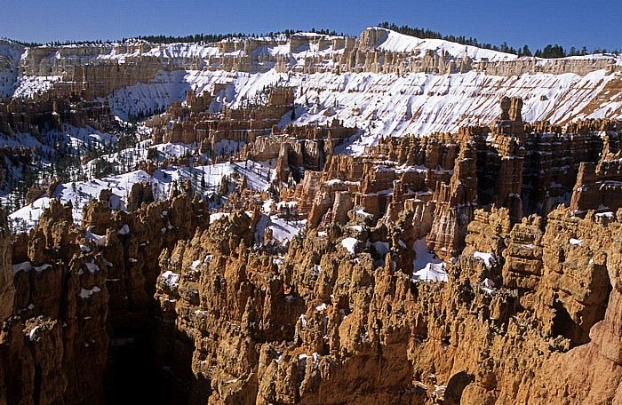 Bryce Canyon National Park Blick vom Sunset Point: Bryce Amphitheater