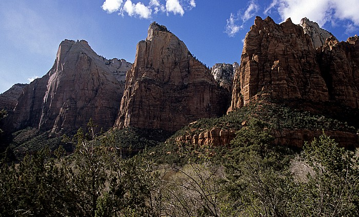 The Three Patriarchs Zion National Park