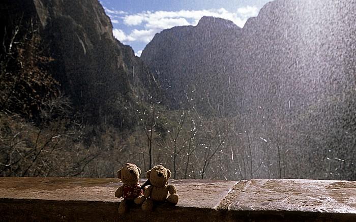 Zion National Park Wasserfall: Teddine und Teddy