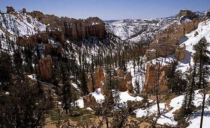 Bryce Canyon National Park Swamp Canyon