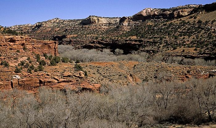 Grand Staircase-Escalante National Monument Escalante River Canyon