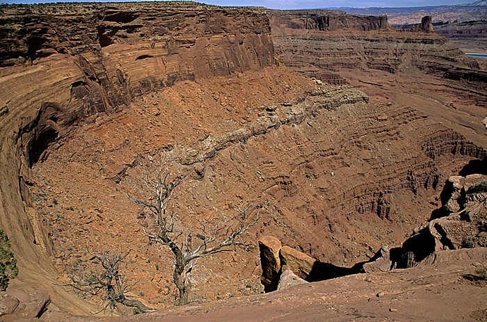 Dead Horse Point State Park Blick vom Dead Horse Point Overlook