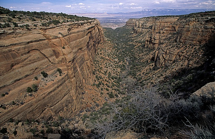 Colorado National Monument Blick von Red Canyon Overlook: Red Canyon