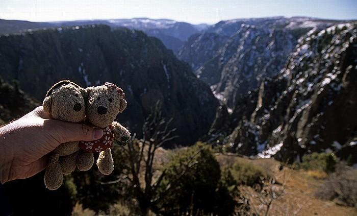 Black Canyon of the Gunnison National Park Tomichi Point: Teddy und Teddine