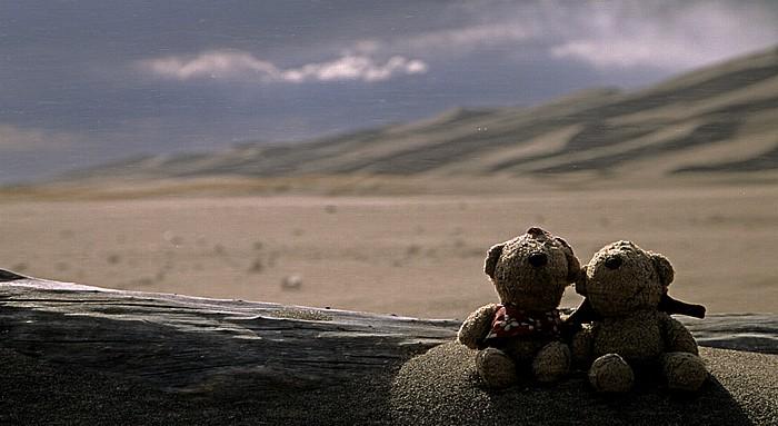 Great Sand Dunes National Park Great Sand Dunes: Teddine und Teddy