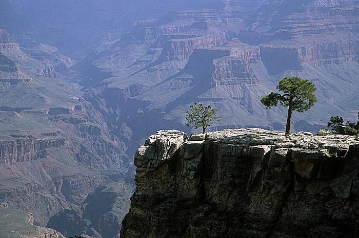 Grand Canyon National Park South Rim Bright Angel Canyon
