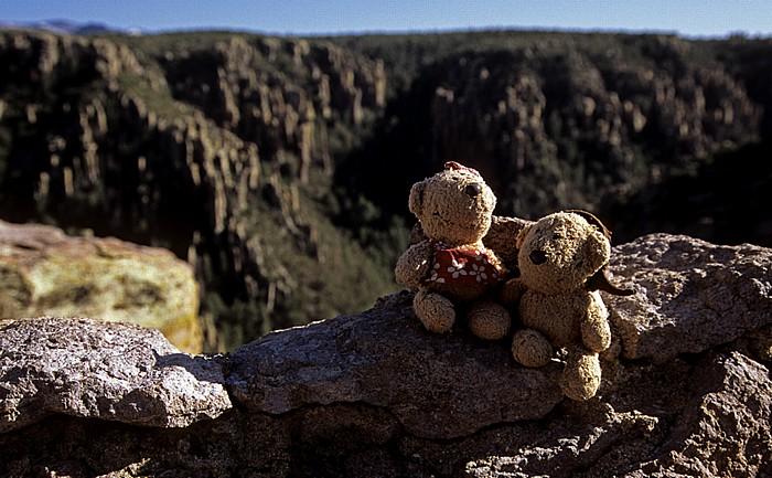 Chiricahua National Monument Teddine und Teddy