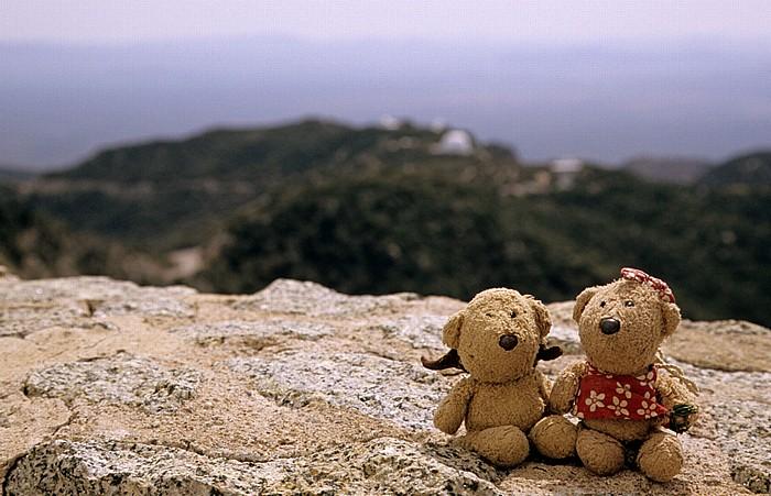 Kitt Peak National Observatory (KPNO): Teddy und Teddine