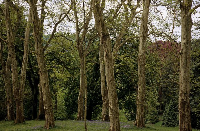 Essen Park der Villa Hügel