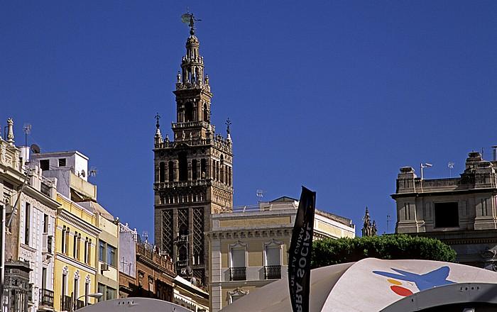 Centro: Plaza de San Francisco, Giralda Sevilla