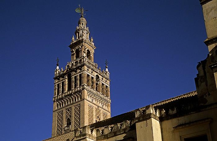 Centro: Kathedrale (Santa María de la Sede): Giralda Sevilla 2010
