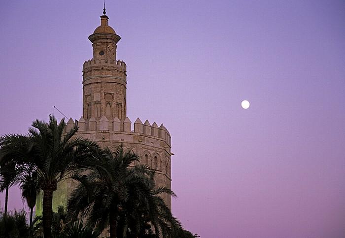 Torre del Oro (Goldturm) Sevilla 2010