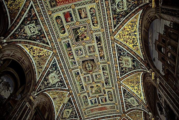 Siena Dom (Cattedrale di Santa Maria Assunta): Decke der Piccolomini-Bibliothek