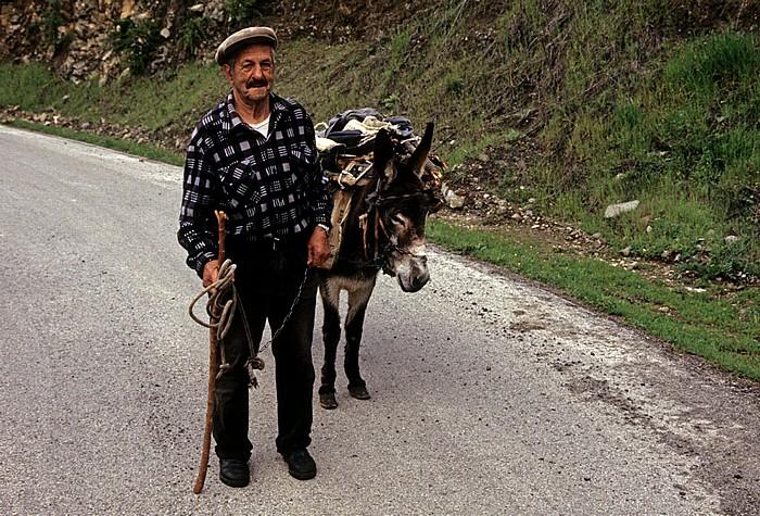 Kourdali Troodos-Gebirge: Bauer mit Esel