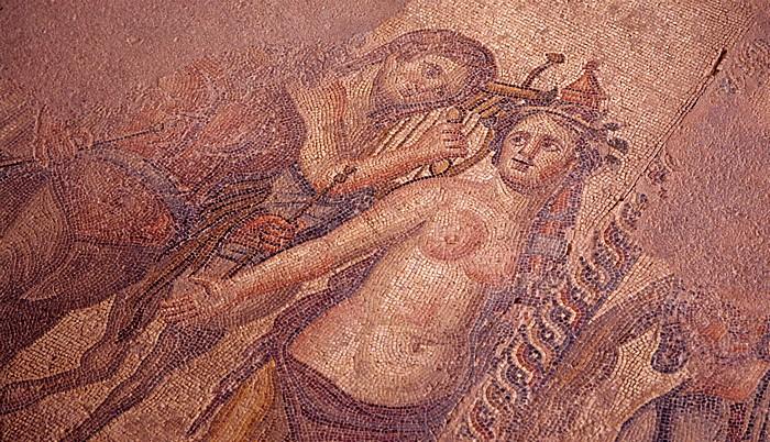 Paphos Archäologischer Park: Haus des Aion: Mosaik
