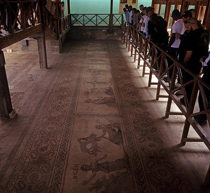 Paphos Archäologischer Park: Haus des Dionysos: Mosaiken