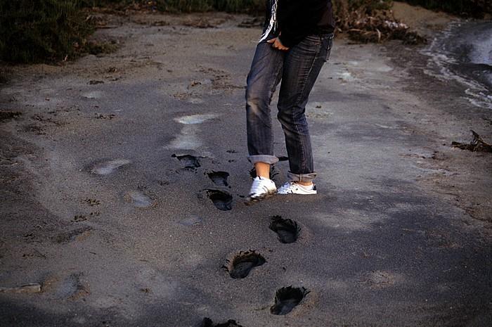 Larnaka Salzsee: Spuren im Sand
