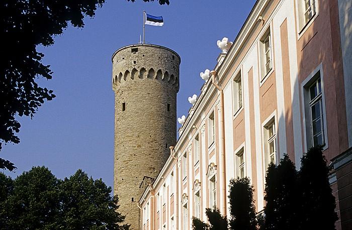 Altstadt: Domberg - Castrum Danorum, Wehrturm Langer Hermann (Pikk Hermann) Tallinn 2011