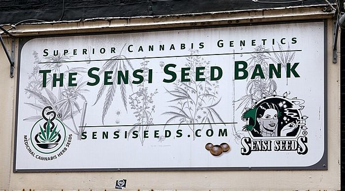 Centrum: Nieuwendijk - The Sensi Seed Bank Amsterdam