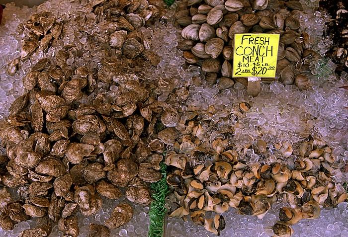 Washington, D.C. Maine Avenue Fish Market (The Fish Wharf, The Wharf)