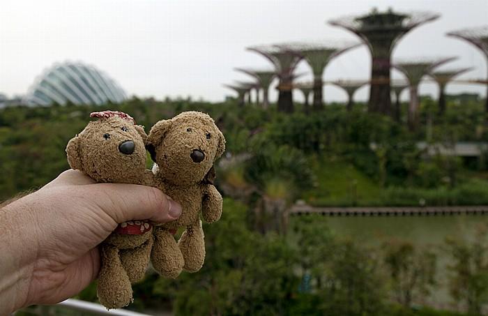 Singapur Gardens by the Bay: Bay South Garden - Teddine und Teddy Cloud Forest