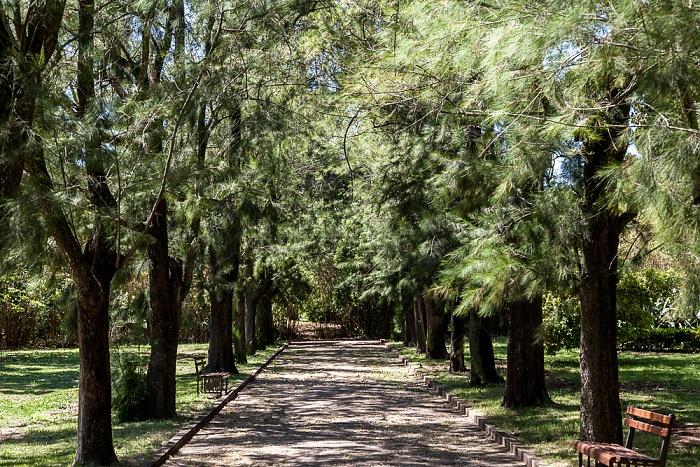Belém: Jardim Agrícola Tropical Lissabon