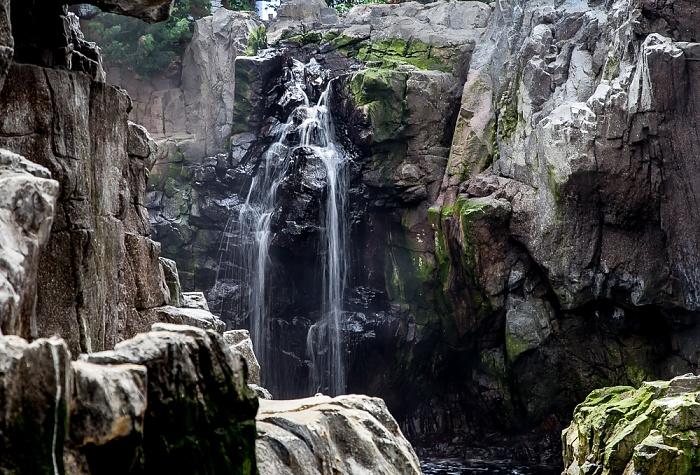 Oceanário de Lisboa: Wasserfall Lissabon
