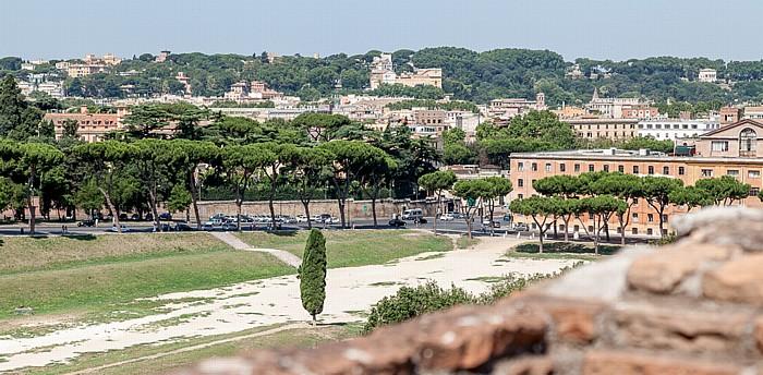 Blick vom Palatin: Circus Maximus Rom